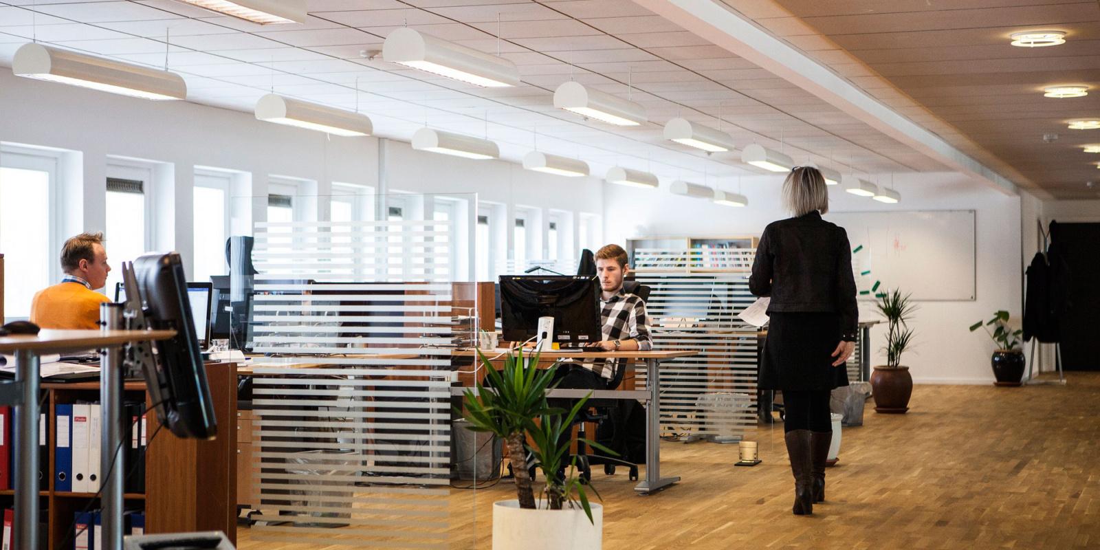 eugenia-marin-decoracion-flores-oficinas-a-1