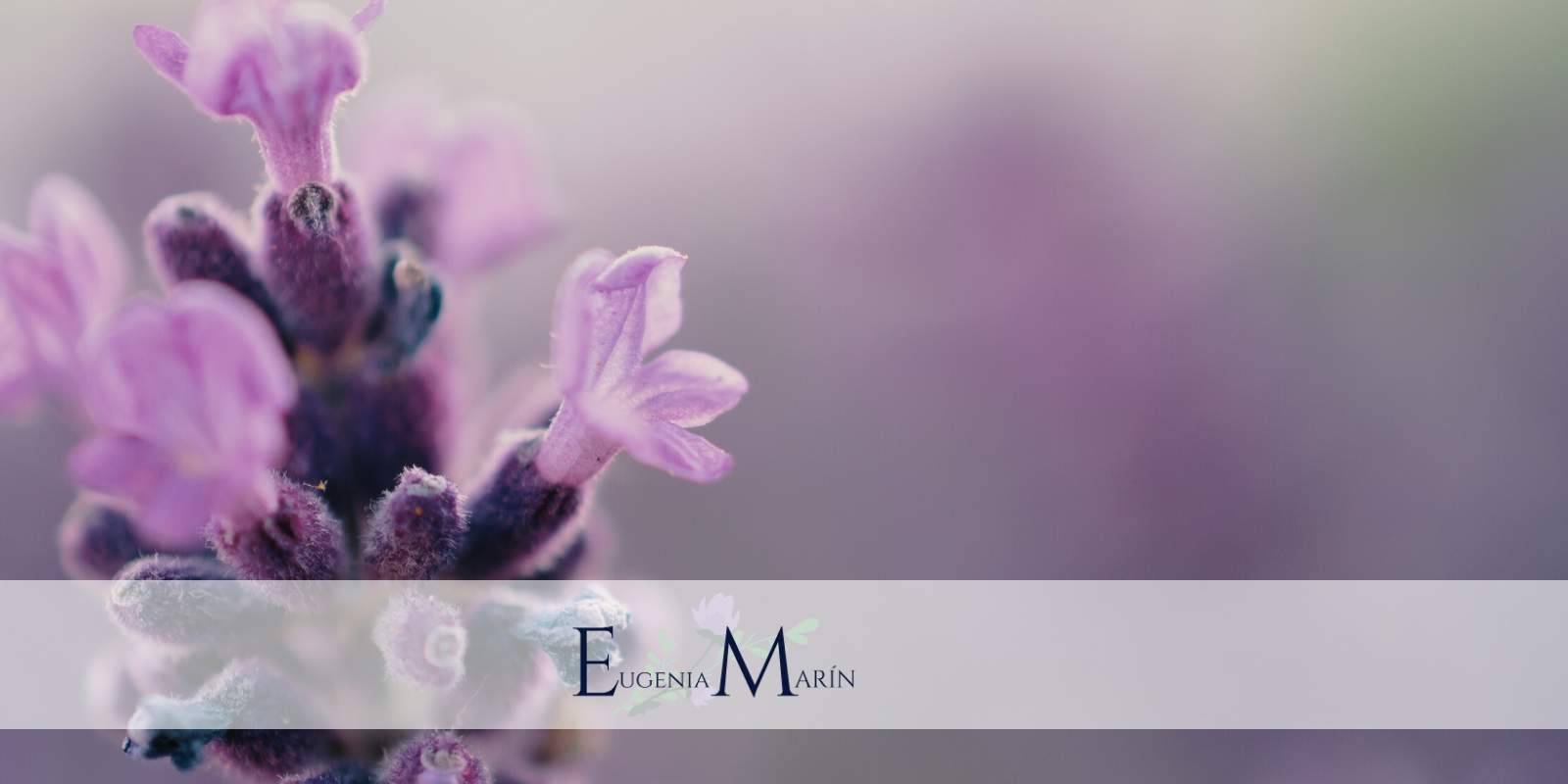Flores virtuales a domicilio
